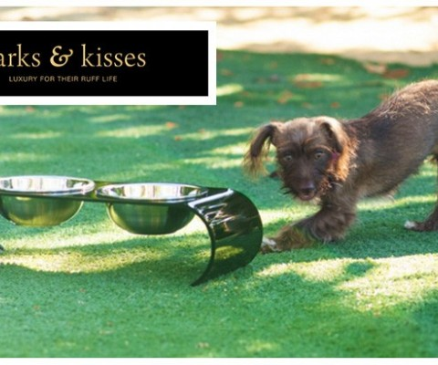 Barks & Kisses Introduces its First Line of Ashford Collection Pet Diners for Dogs and Cats
